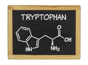 トリプトファンは睡眠効果も上げ人にも優しくなれる素敵な成分